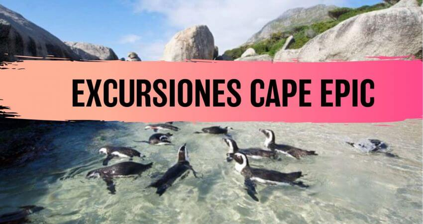 Cape Epic, Excursiones, Boulders Beach, Cape Good Hope, MASQUEBICI